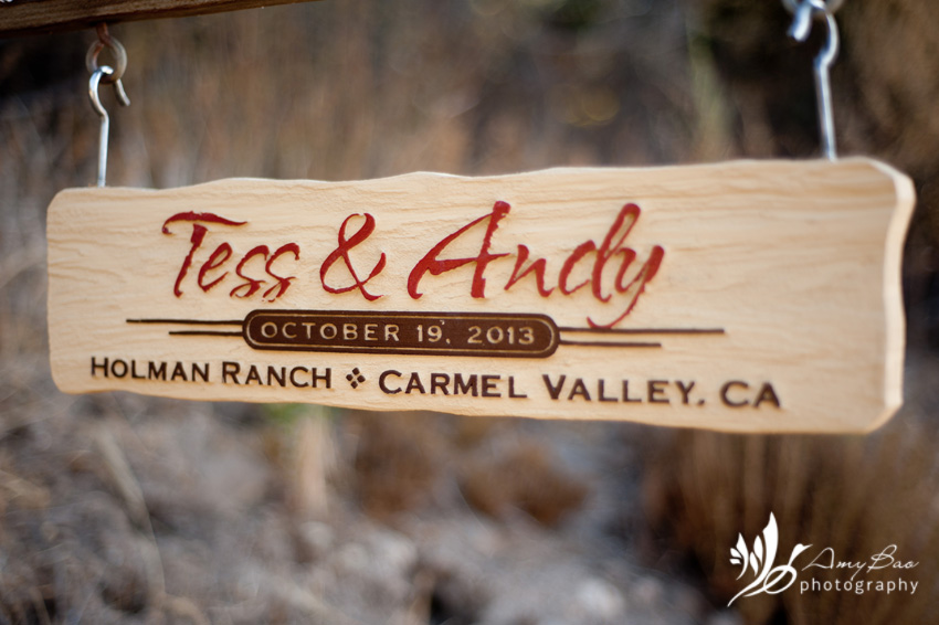 Amy Bao Photography_Tess Andy Wedding_Holman Ranch-2